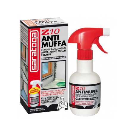 Z10 250ml antimuffa spray